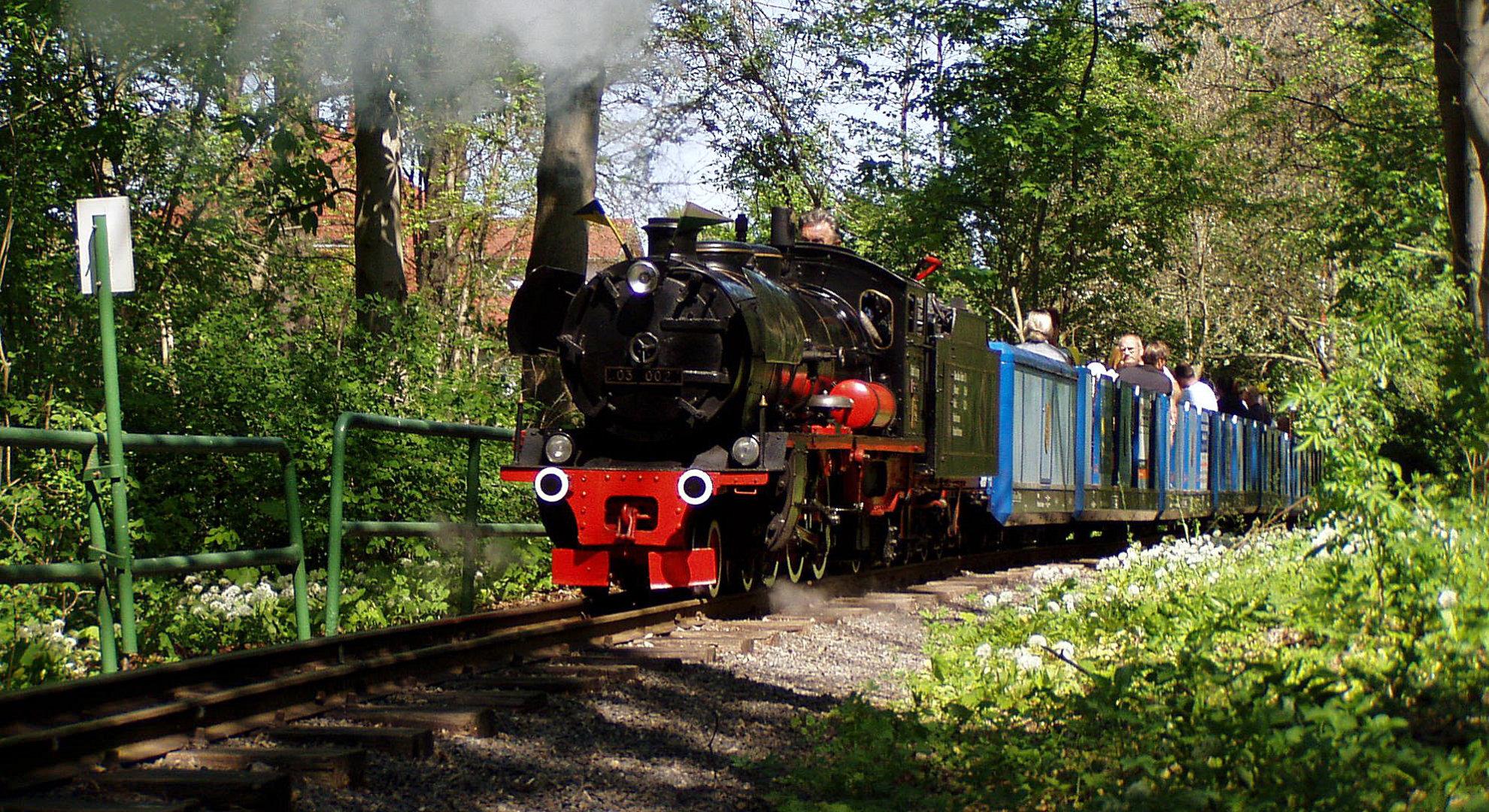 Dampflokomotive am Haltepunkt Elsteraue